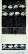 Fúlvia Gonçalves. Sementes 3. Esferografia